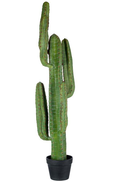 Cactus + Pot Noir Resine Vert Large