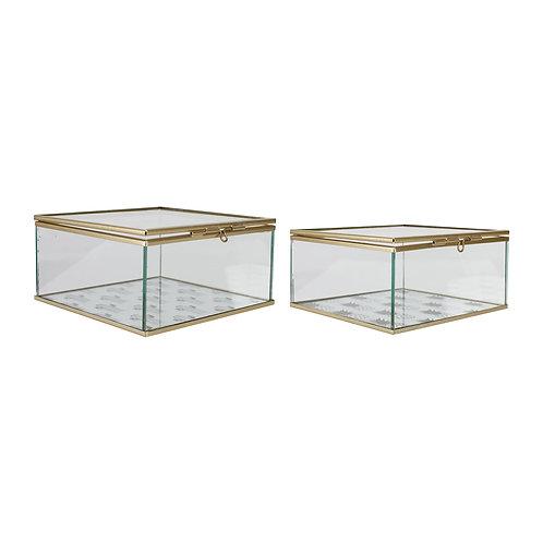 Boîtes 2 assorties CACTEA ANANAS