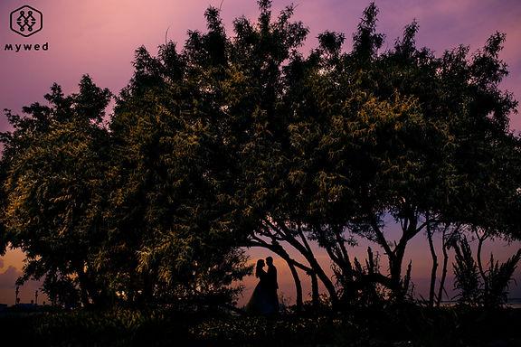 Fotograf nunta Constanta MyWed premiu (4