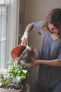 Watering Indoor Plants