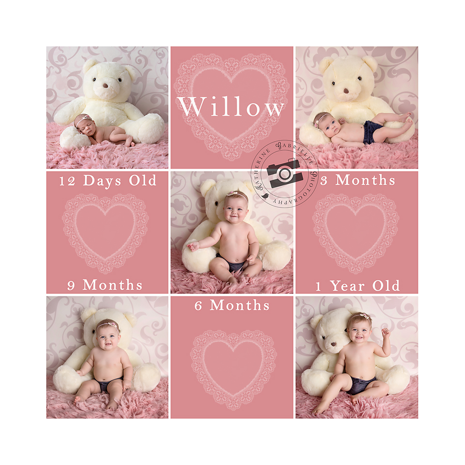 Willow 12months square LR