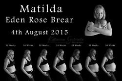 Chelsie Pregnancy Timeline.jpg