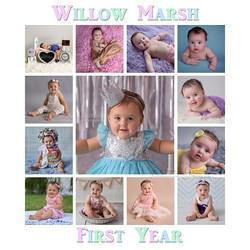 Willow 1 year FB.jpg