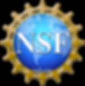 NSF Logo 1.png