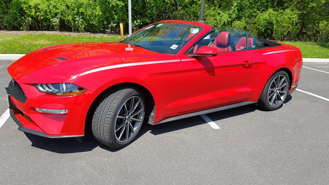 My Encounter with a Mustang