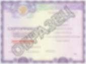 Сертификат по русскому языку на гражданство