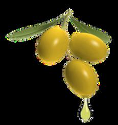Olivenöl_leichtfruchtig.png