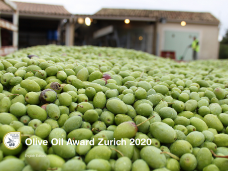 The Olive Oil Award Zurich focused on home testing. This is worth a critical review.