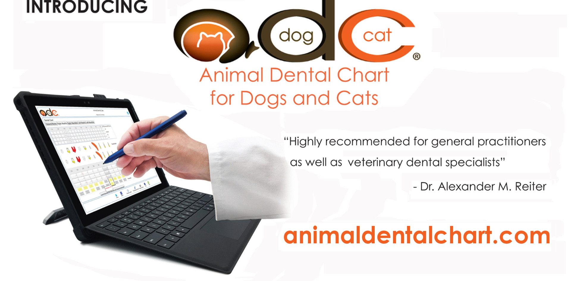 Animal Dental Chart for Dogs and Cats