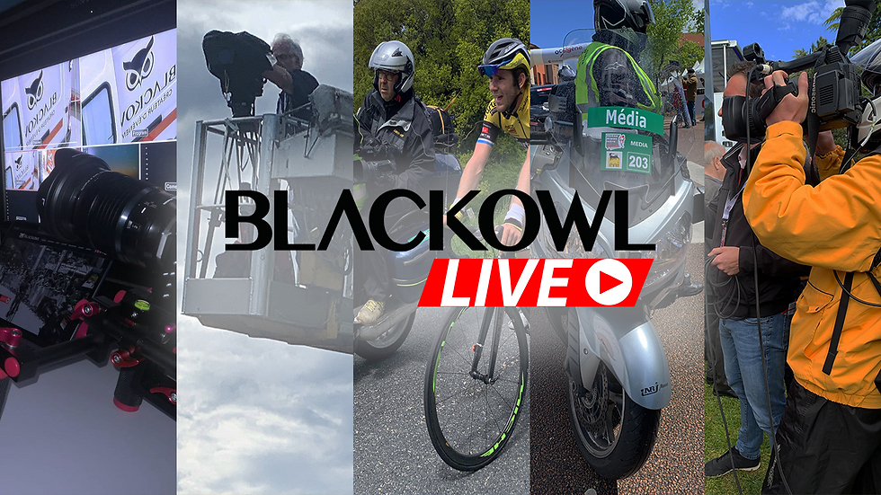 Accueil - Blackowl Live.png