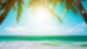 Beach Zoom