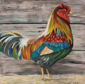 Kitchen Chicken