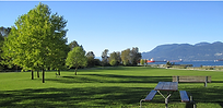 Point Grey.png