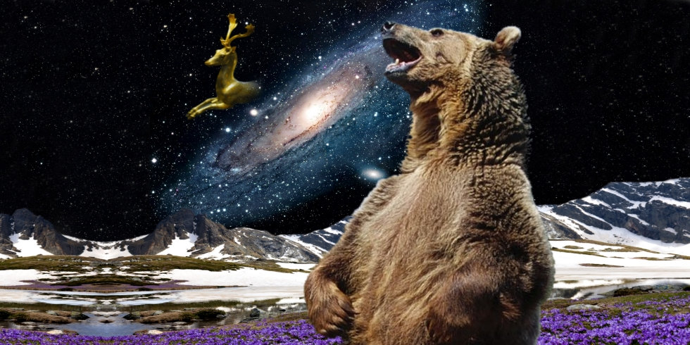 Bear_Event_Detail_Landscape.jpg