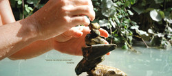 משתתפת בסדנת איזון אבנים