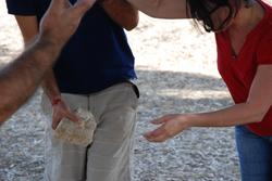 מאבן לאבן - פעילות גיבוש בסגנון ODT