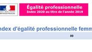 Index d'égalité professionnelle femmes - hommes