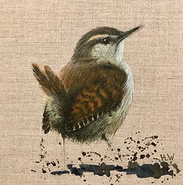 Wren 2 - Helen Welsh - Alpha Art Gallery