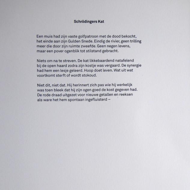 DichtDruk 5 gedicht