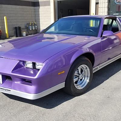 Purple Camaro