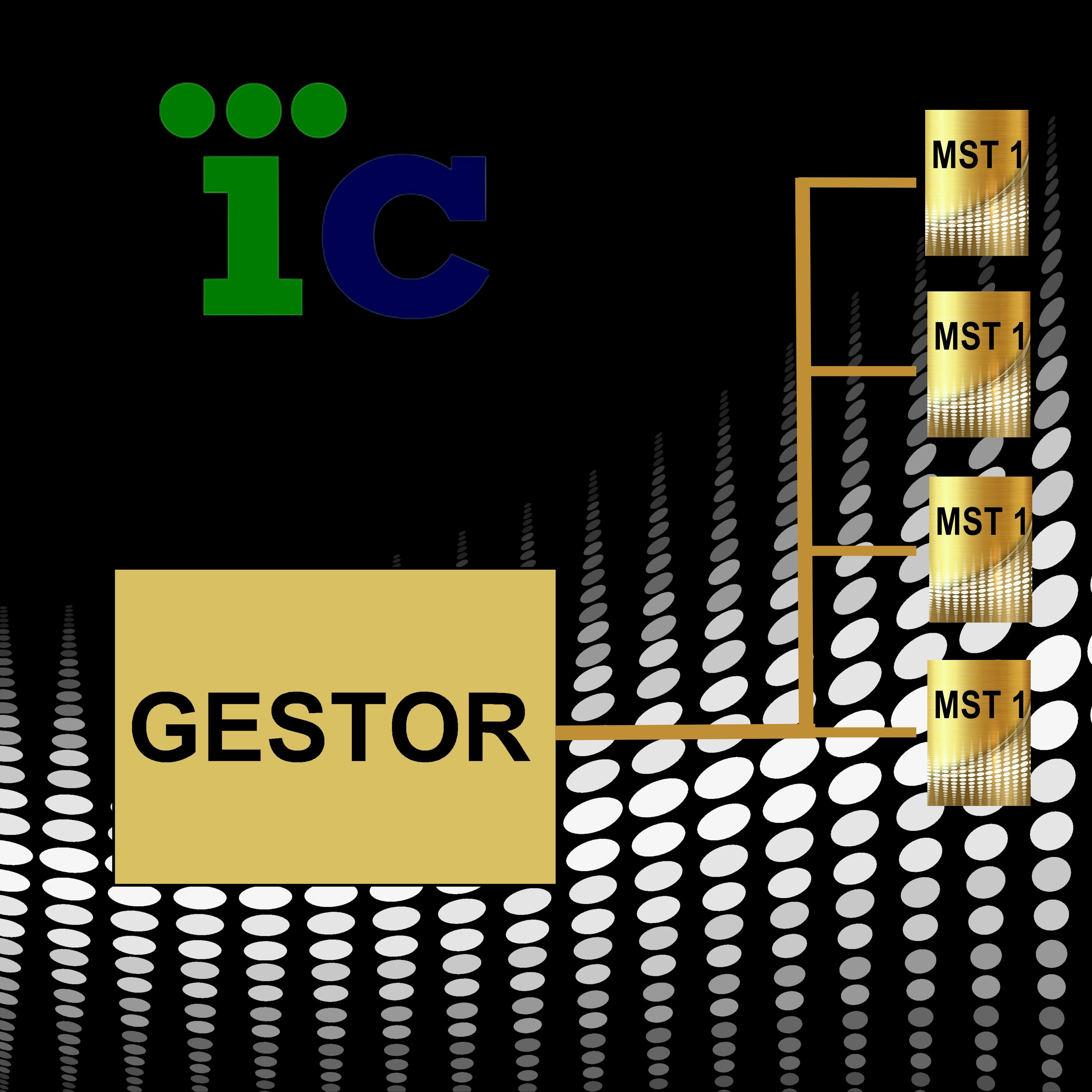GESTORR2