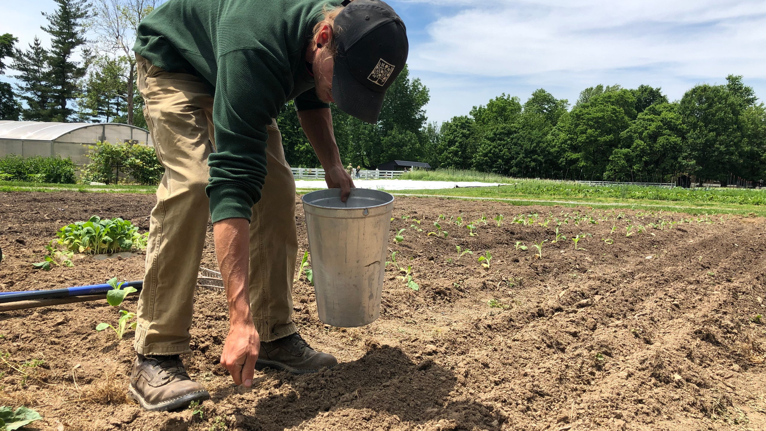 Michael Moore, Farm Manager of Shaker Village in Harrodsburg, Kentucky, plants the first hemp seeds on the property since the 19th century.