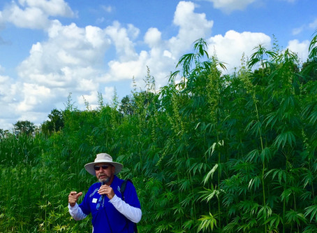 A Tribute to Kentucky Hemp Pioneer Dr. David Williams