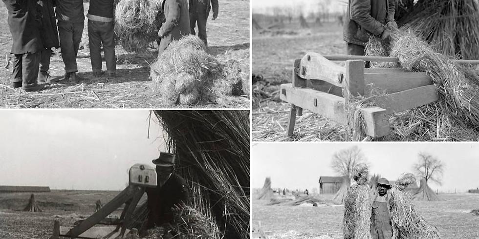 Black [hemp] History