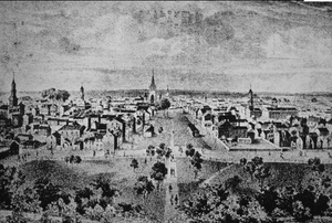 Early 19th century view from Morrison College of Downtown Lexington.