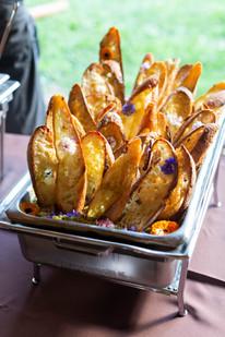Hemp Wildflower English Pea Hummus on Hemp Toast