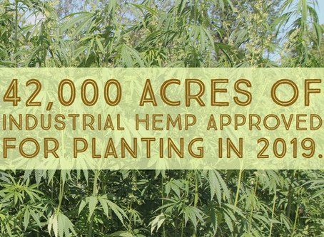 More than 42,00 acres approved for Kentucky hemp production