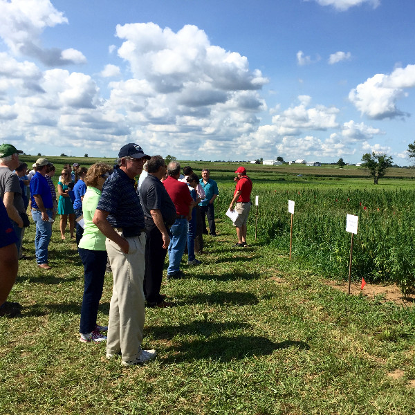 Attendees of the UK hemp research field day listen to Paul Woosley, an associate agronomy professor at Western Kentucky University in Bowling Green.