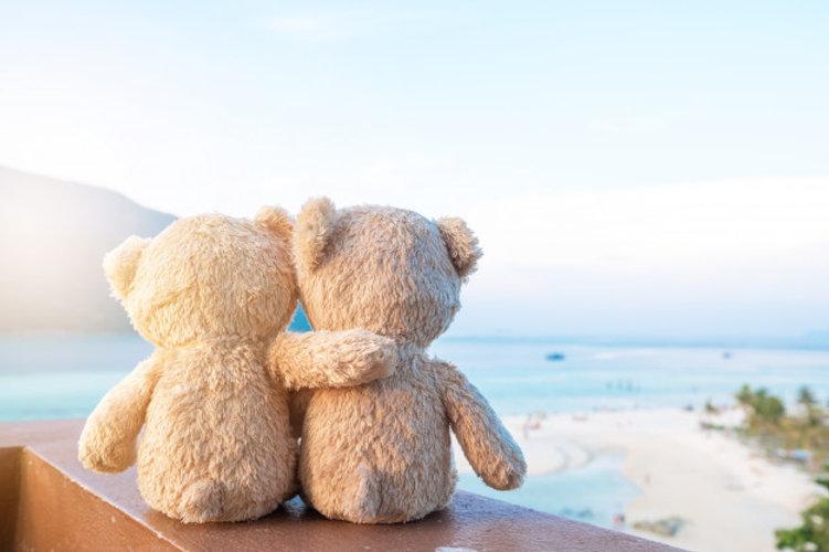 deux-ours-peluche-assis-vue-mer-concept-amour-relation-belle-plage-sable_7636-1180.jpg
