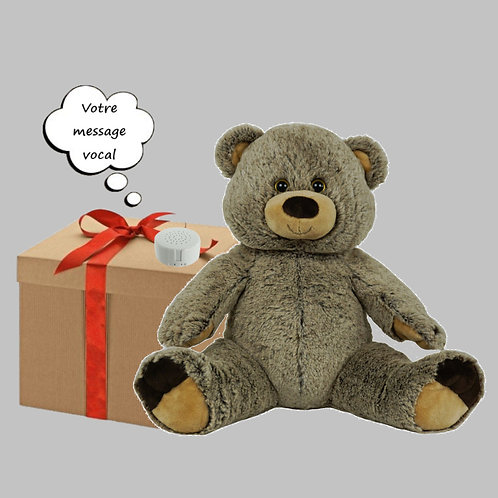 Peluche avec son enregistrable - Ours Grizzly en peluche de 40 cm