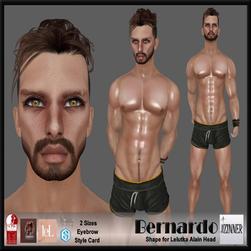 Zinner Shapes & Gallery - Bernardo Shape for Lelutka Alain Head.png