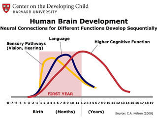 How Poverty Impacts Brain Development and Learning