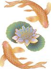 Koi Fish Logo