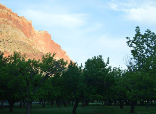 Capitol Reef, whatever that means