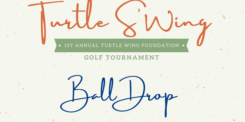 Turtle S'Wing Ball Drop