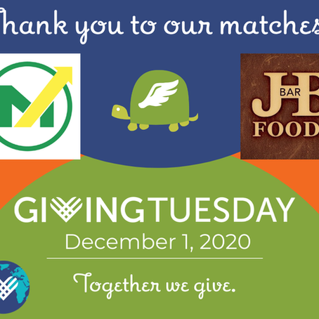 Turtle Wing Announces #GivingKidsWingsDay2020