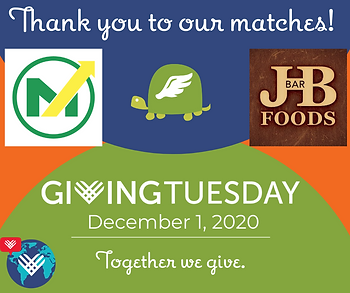 Giving Tuesday 2020(2).png