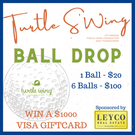 Turtle S'Wing Golf Tournament Ball Drop Is Open to All