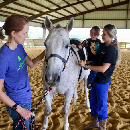 Turtle Wing Invites Equestrians to Informational Program on Hippotherapy