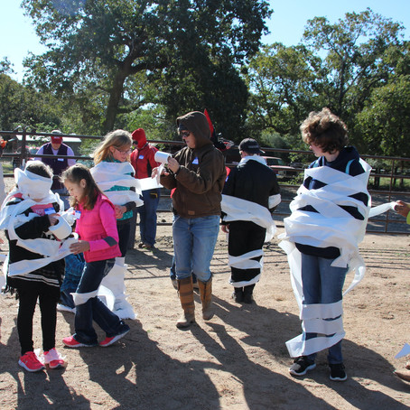 Halloween Theme for Turtle Wing Foundation's Social Skills Outing Group