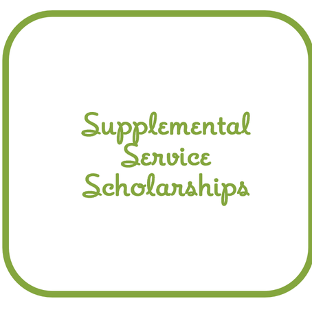Why Turtle Wing?   Scholarships for Supplemental Services Mean Critical Therapies are Not Delayed!