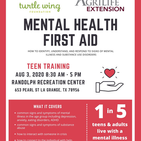 Youth Mental Health First Aid Program to be Offered August 3rd