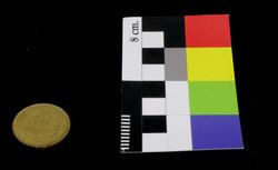 Moneda de diez centésimos