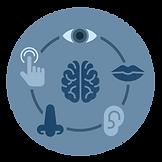 Topics-icon_Sensory-Analysis.png