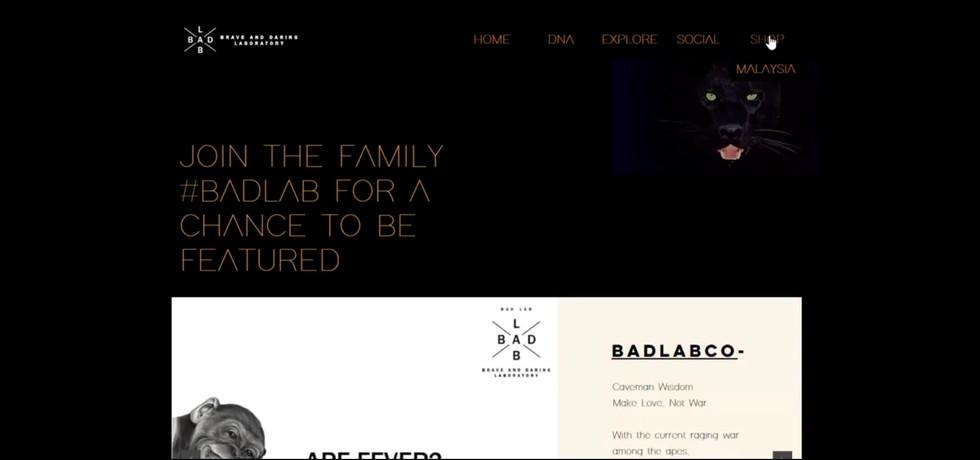 BADLAB Web Proposal