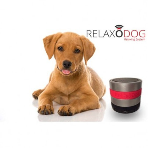 RELAXO DOG
